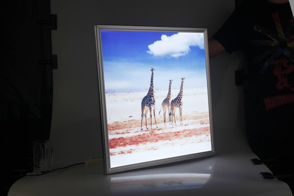 video displayer